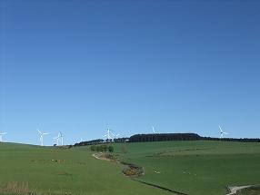 写真・図版 : 郊外に林立する風力発電機