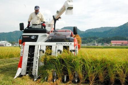 写真・図版 : あきたこまちの収穫風景=2011年9月8日、秋田県湯沢市川連町