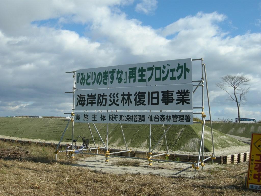 写真・図版 : 看板の後ろに大規模な盛り土が見える。植樹はこの上で行われた=仙台市若林区(筆者撮影)