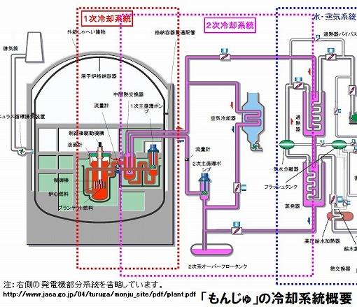写真・図版 : もんじゅの冷却系統図