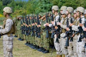 日米共同訓練開始式で整列する陸上自衛隊員(奥)と米海兵隊員=2013年10月8日、滋賀県高島市