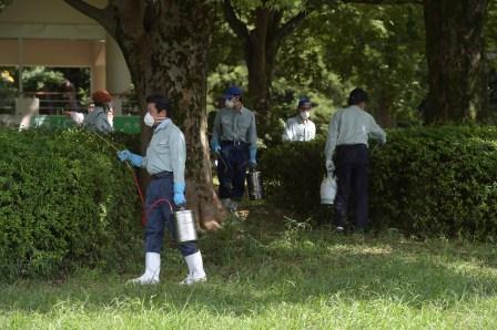 写真・図版 : 閉鎖された代々木公園で、蚊を駆除するため殺虫剤が散布された=東京都渋谷区、2014年9月