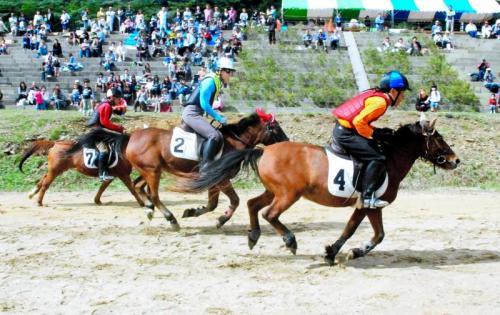 写真・図版 : 対州馬が速さを競う「馬跳ばせ」