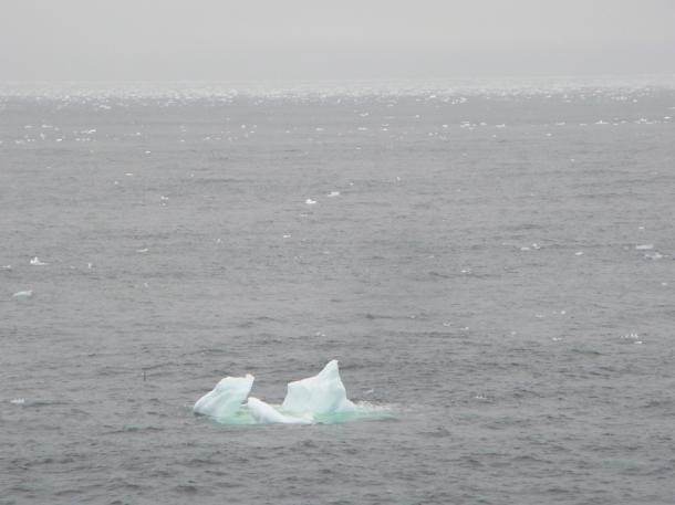 海面に氷をぶちまけたような氷海