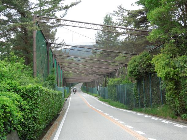 コースを貫く県道は防球ネットで厳重に守られている(兵庫県宝塚市)