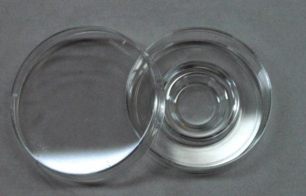 受精卵の培養用シャーレ
