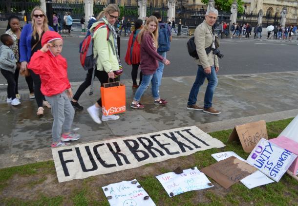 国会議事堂前の公園に置かれた国民投票のやり直しを求める横断幕=6月25日、ロンドン
