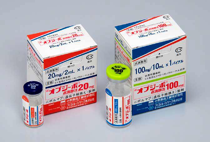 写真・図版 : 免疫の働きのブレーキをはずすという免疫チェックポイント阻害剤