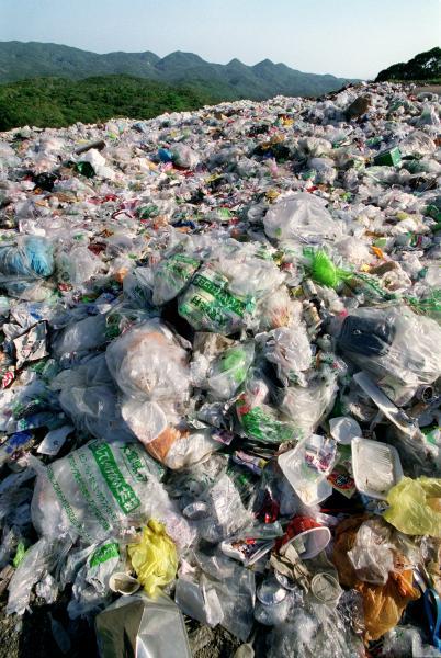 写真・図版 : やんばるの森にある廃棄物処分場=2002年7月、沖縄県大宜味村、浜田哲二撮影