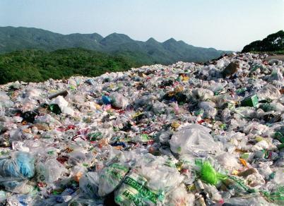 写真・図版 : やんばるの森にある廃棄物処分場