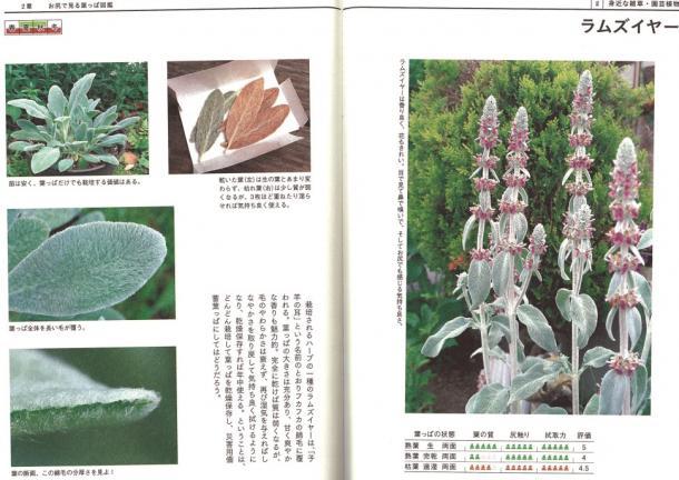 「糞土師」によるマジメでエコなノグソ・ガイドブック