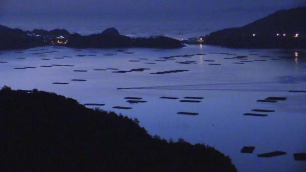 夜の瀬戸内海、カキ棚が浮かぶ(写真:宮﨑賢)