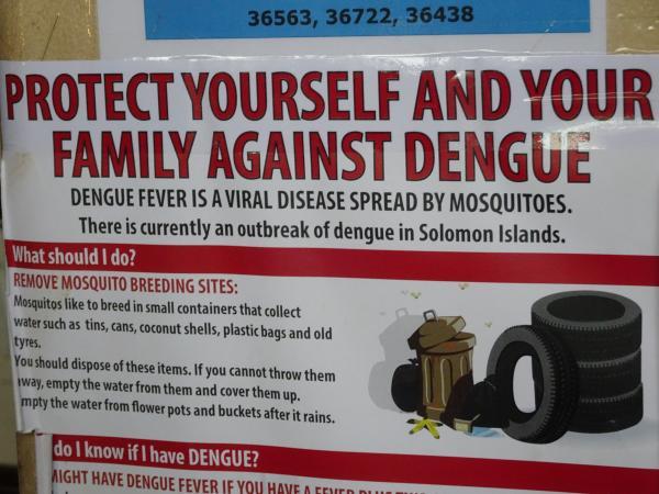 デング熱への注意を呼びかけるポスター。散乱ごみが小さな水溜りをつくり、そこから蚊が発生することが原因だと警告している