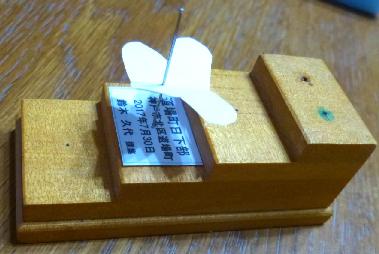 写真・図版 : 【写真7】採集ラベルを平均台の上から三段目の台の穴に入れたところ。採集ラベルは4列で、採集地、その住所、採集年月日、採集者氏名。標本の位置にはチョウ型の小紙を置いてある。
