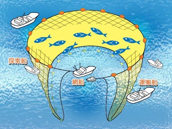 写真・図版 : まき網漁のやり方=鳥取県のホームページより