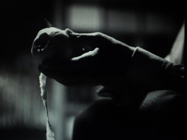写真・図版 : 【写真6】 ナイフで剥かれたリンゴの皮は、だらりと下に垂れさがったままである