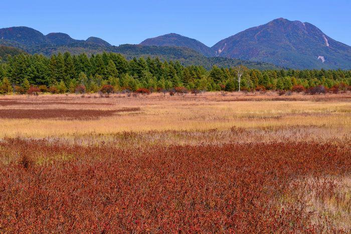 訪日外国人誘致へ国立公園をどう生かすか