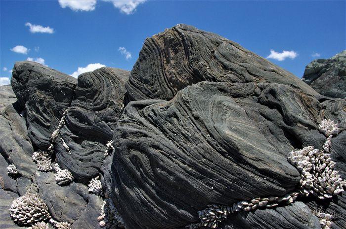 地球の営みと地震・火山