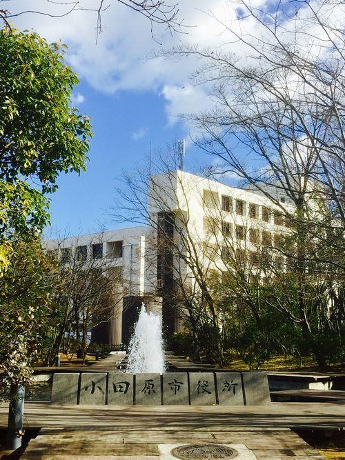 写真・図版 : 小田原市役所