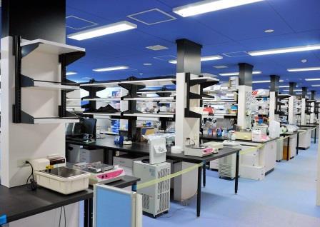 写真・図版 : 京都大iPS細胞研究所のオープンラボ