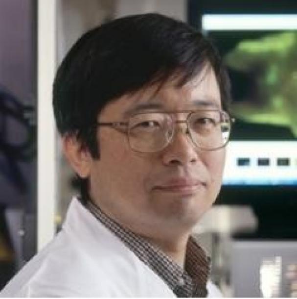 写真・図版 : 小林久隆・米NIH主任研究員