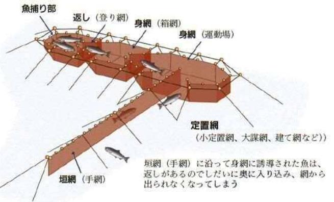 写真・図版 : 定置網の構造