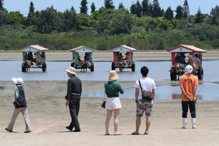 写真・図版 : 由布島との間を観光客を乗せて行き交う水牛車=2018年4月26日、沖縄県竹富町の西表島、小宮路勝撮影