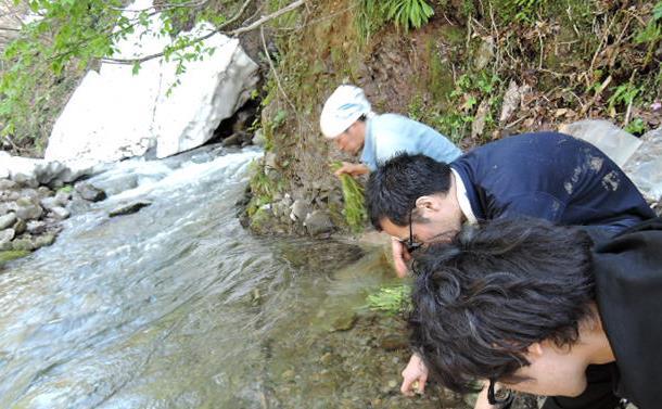山形県鶴岡にて――循環と還元の世界に生きる