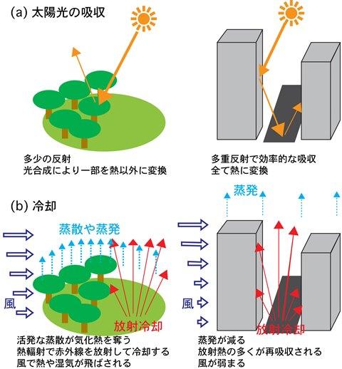 写真・図版 : 図2:都市化の気温への影響