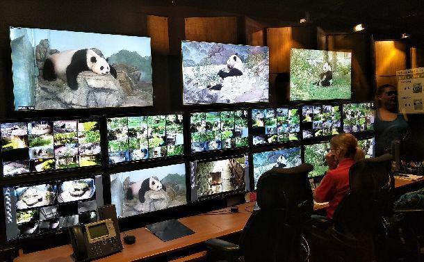 3頭のパンダを見守るシステム。ガラス張りで来園者にも公開されている=2018年5月26日、ワシントン・スミソニアン動物園。吉岡桂子撮影