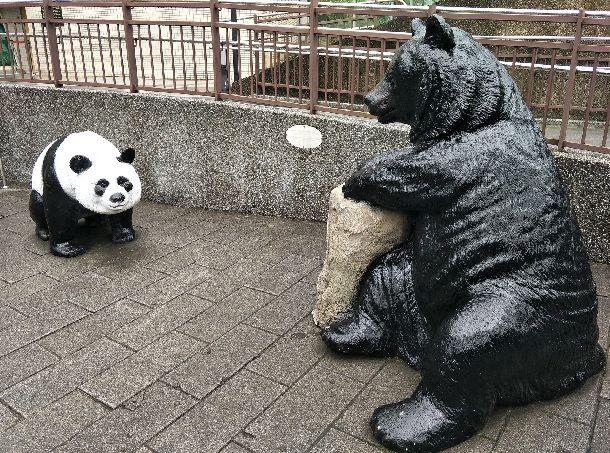 写真・図版 : 台北市立動物園のパンダ舎の前に置かれている台湾固有のタイワンツキノワグマ(右)とパンダの像=2018年1月30日、台北市。吉岡桂子撮影