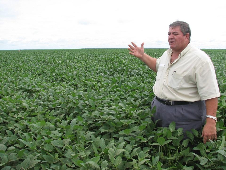 写真・図版 : 地平線まで続く、三井物産出資の大豆畑= 2008年、ブラジル・バイーア州