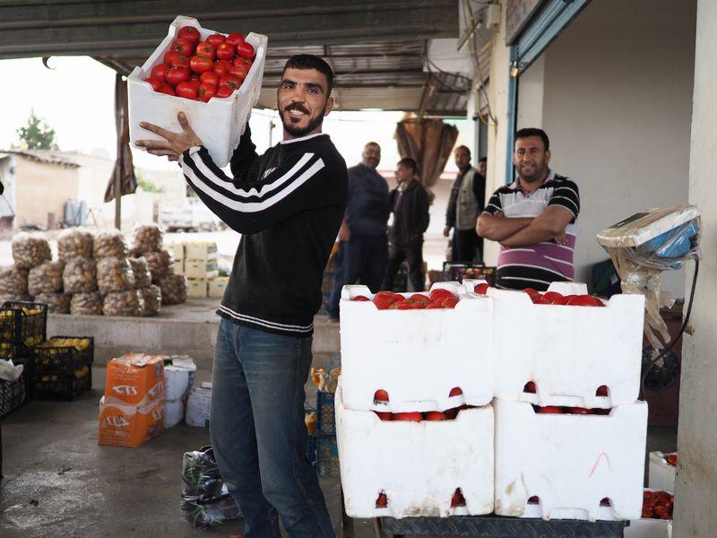 写真・図版 : シリア北東部、アムダ。夜明けとともに、町はずれの市場には次々と新鮮な野菜が運ばれてくる