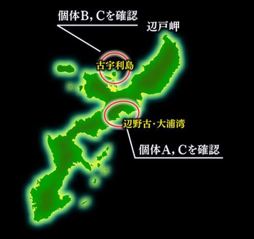 写真・図版 : ジュゴンの個体A,B,Cが確認された場所(琉球朝日放送提供)