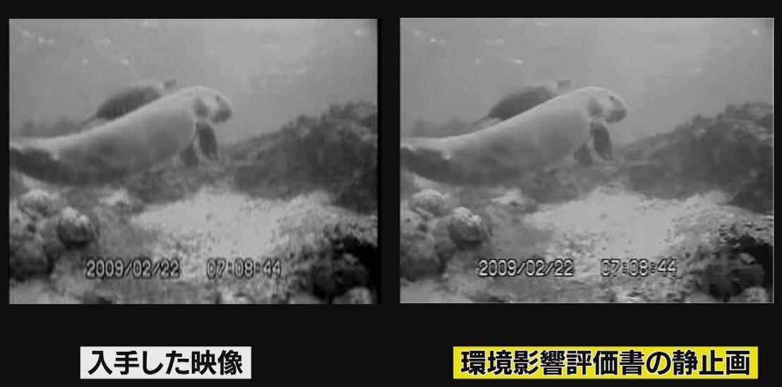 写真・図版 : 沖縄防衛局の環境評価書にある静止画(右)と琉球朝日放送が入手した映像の一部。ピタリと重なる(琉球朝日放送提供)