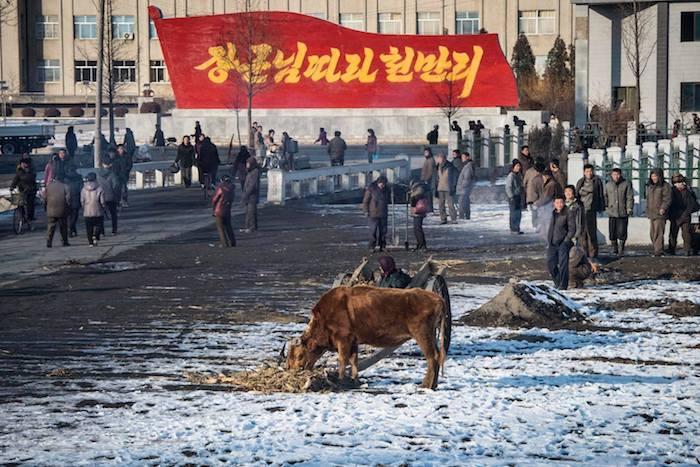 写真・図版 : 中朝国境から平壌に向かう列車内から。地方の風景。2016