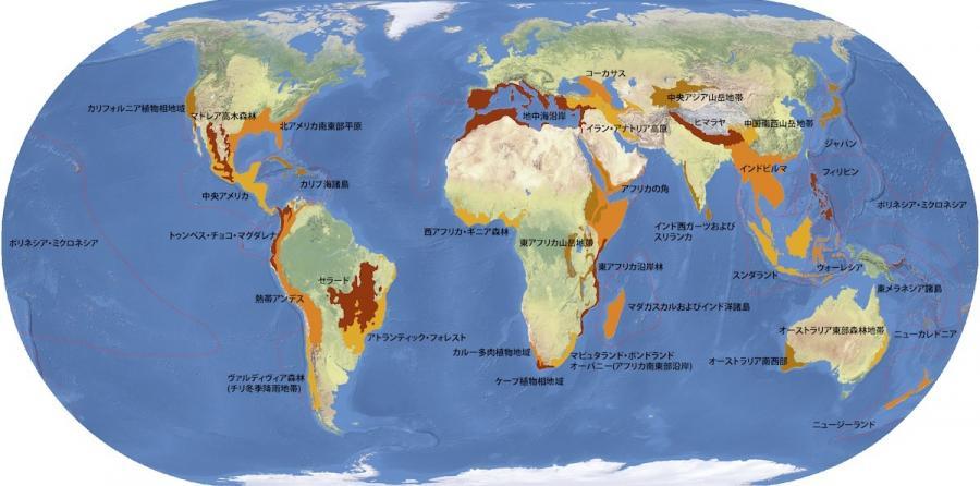 写真・図版 : 生物多様性ホットスポット(コンサベーション・インターナショナル提供)