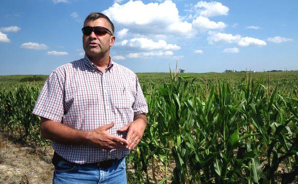 写真・図版 : 遺伝子組み換え作物の農場を経営する米国人男性 =2013年7月31日、米国ネブラスカ州ノースプラット
