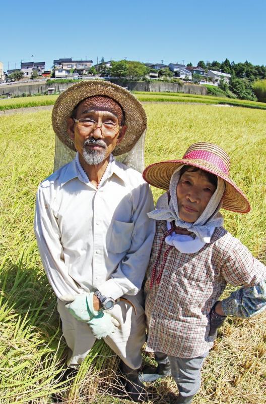 写真・図版 : 新潟県柏崎市で小規模稲作を営む内山常蔵さん夫妻(筆者撮影)