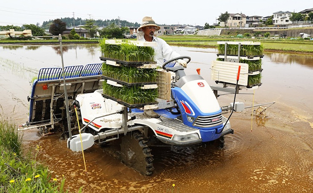 写真・図版 : 田植えをする新潟県柏崎市の内山常蔵さん(筆者撮影)
