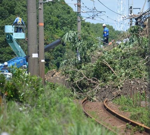 写真・図版 : 豪雨によって土砂や倒木に覆われた山口県光市内のJR山陽線=7月9日、三澤敦撮影