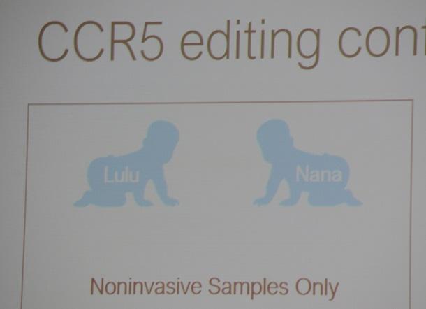 写真・図版 : 賀建奎・南方科技大副教授が国際会議で示した画面。たんぱく質「CCR5」の遺伝子に変異を入れ、HIVに感染しにくい体にすることを狙った。生まれたという双子の女児を「ルル」と「ナナ」と呼んでいた=2018年11月28日、福地慶太郎撮影