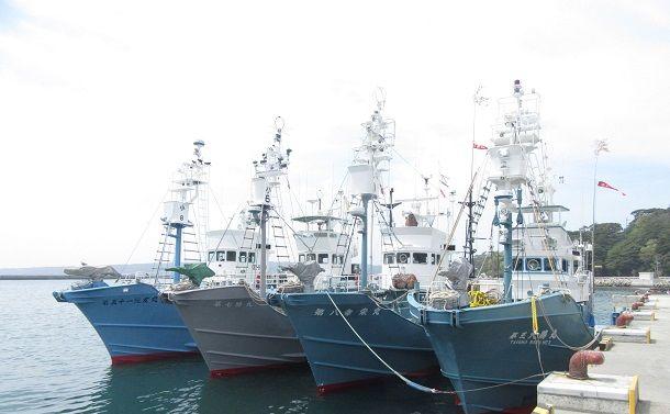 国際捕鯨委員会脱退で得るもの、失うもの(中)