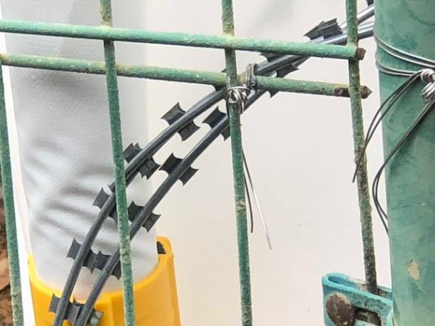 写真・図版 : 琉球セメントの桟橋敷地周囲に張られていた有刺鉄線。剃刀の刃のような鋭い金属片がついている=撮影・筆者