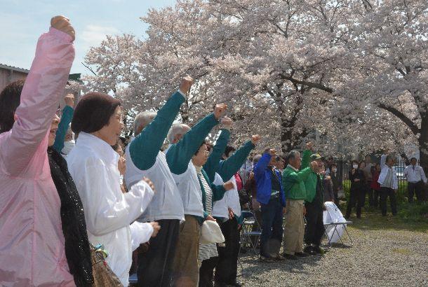 写真・図版 : 2015年の統一地方選。桜の木の下で出陣式。気勢をあげる支持者たち=2015年4月3日、埼玉県川越市