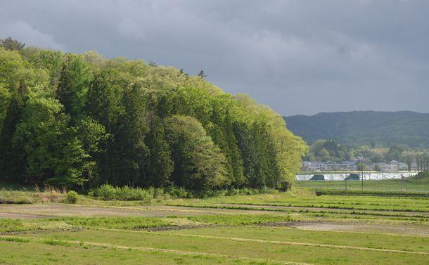 写真・図版 : 除染農地は丁寧な草刈りで管理されているが、栽培はなかなか始まらない。右手に光って見えるのは除染廃棄物の仮置き場=2018年5月9日、福島県飯舘村