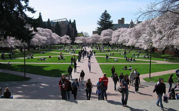 大学における雇用契約と内定通知