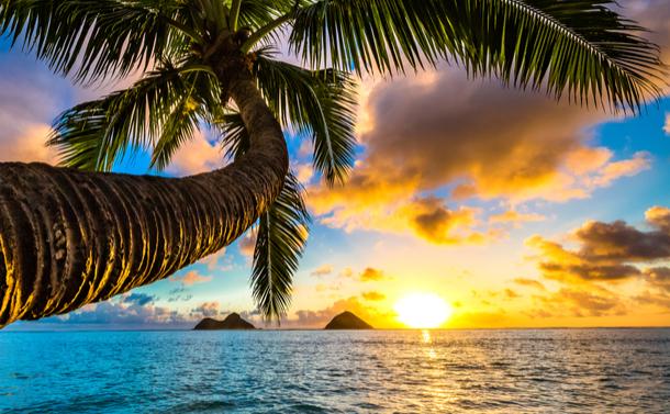 真冬のハワイで考えた「交ざる」ということ