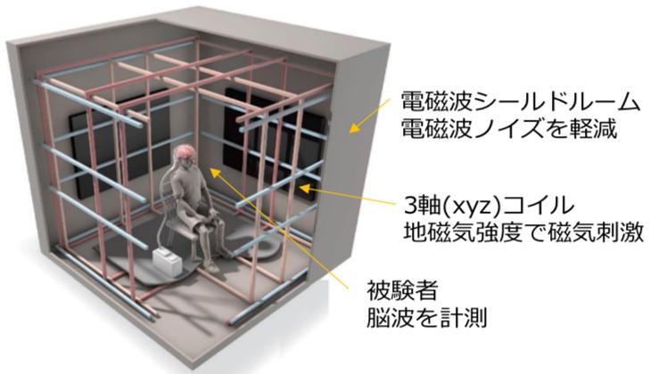 写真・図版 : カルテックの研究室におけるヒト磁気感覚のテスト装置(C. Bickel, courtesy AAAS.)