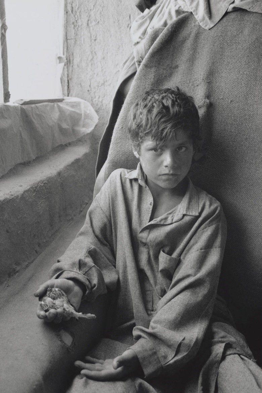 オミッド(10)の父親は戦死し、貧しさゆえに学校に通えない。パチンコで小鳥を捕って遊ぶ(アフガニスタン・カブール、2002年)©Yoshino Oishi
